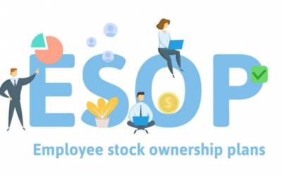 Employee Stock Options for Startups